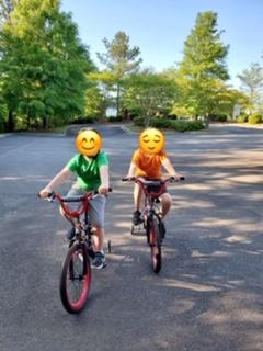 Bike Blog picture